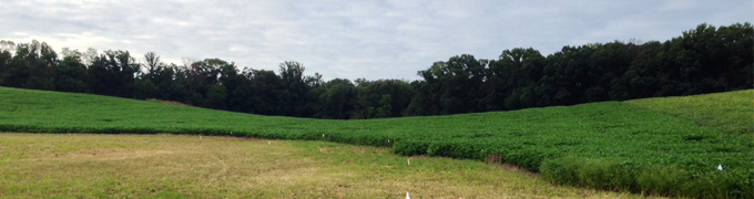 howard county landscape
